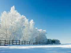 зимний, небо
