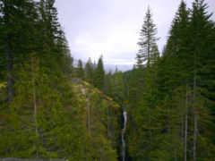 лес, речка Фон № 32464 разрешение 1920x1200