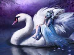 swan, das