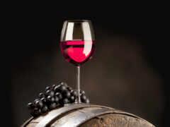 вино, вина