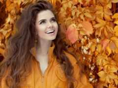 stock, осень, images