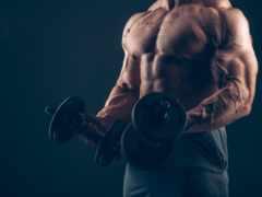 bodybuilding, bodymarket, фитнес