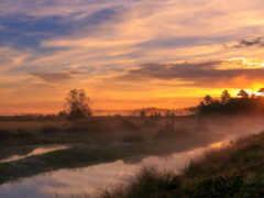 вечер, поляна, bmw