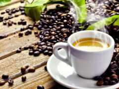 чашка, кофе, zerno