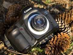 фотоаппарат, mirrorless, wikipediamirrorless