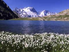 горы, озеро, горное