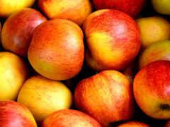 buah, diabetes, yang