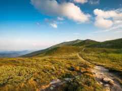 природа, карпаты, горы