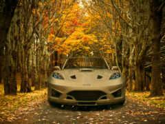 осень, авто, яndex