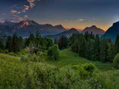 гора, трава, альпы