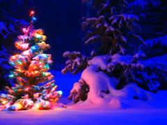 новогодние, красивые Фон № 129557 разрешение 1920x1200