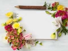 цветы, wood, рамочка