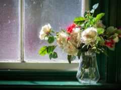 flowers, ваза, картинка