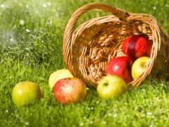 корзина, яблоки, плод