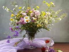 цветы, поле, oir