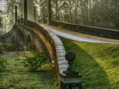 природа, images, roads