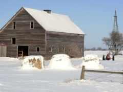 barn, winter, ферма