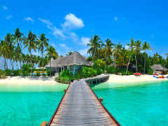 природа, tropics, море