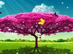 дерево, розовый, красивый