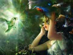 птицы, девушка, freedom