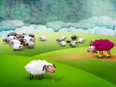 sheep, загадка, весь
