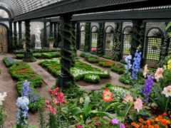 garden, dome, частном