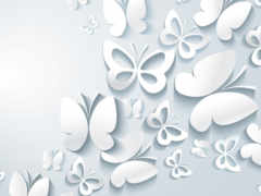 бабочки, подробнее, фон
