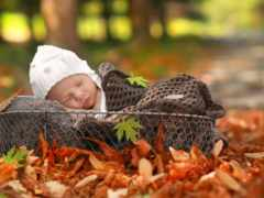 newborn, корзина, коллекция