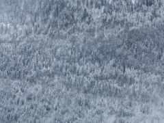 дмитрий, chistoprudov, winter
