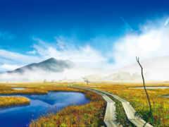 гора, тропинка, болото