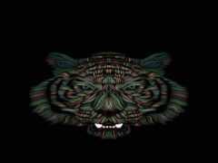 тигр, бенгальский