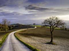 дорога, весна, полях