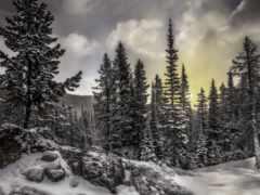 winter, природа, года Фон № 148109 разрешение 2560x1600