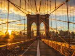 город, мост, утро