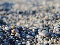 галька, камень, marine