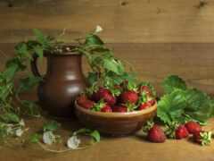 клубника, натюрморт, ягода