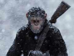 обезьяна, planet, war