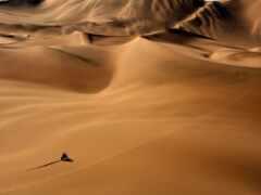 dakar, rally, пустыня