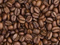 coffee, кафе, новости