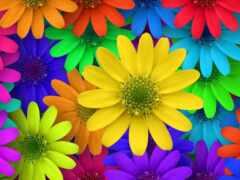 gullar, цветы, лола
