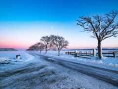природа, winter, луна