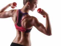 спина, muscle