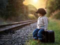 дорога, чемодан, boy