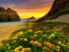 california, coastal, закат