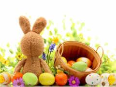 заставки, кролик, яйца