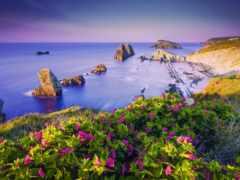 пляж, summer, яndex