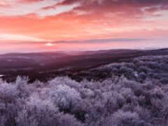 природа, закат, permission