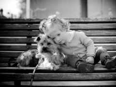 Девочка с собачкой на лавке