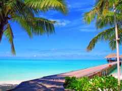 maldives, ocean