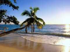 место, goa, райское